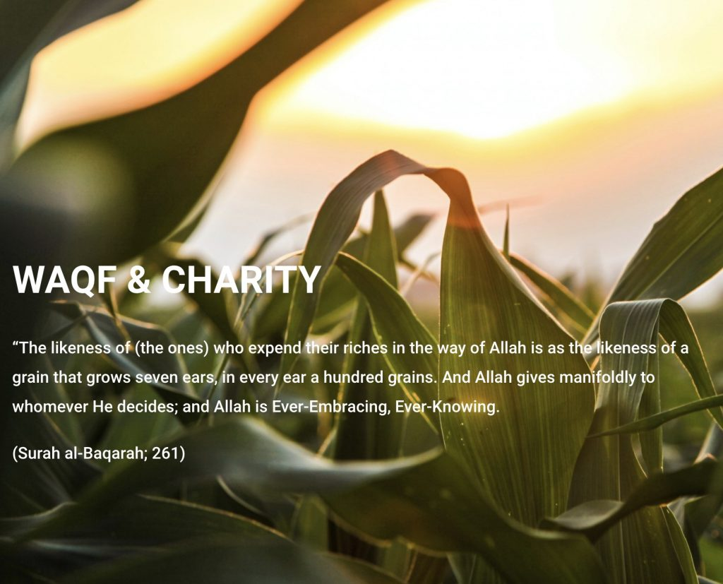 Waqf Charity header snapshot